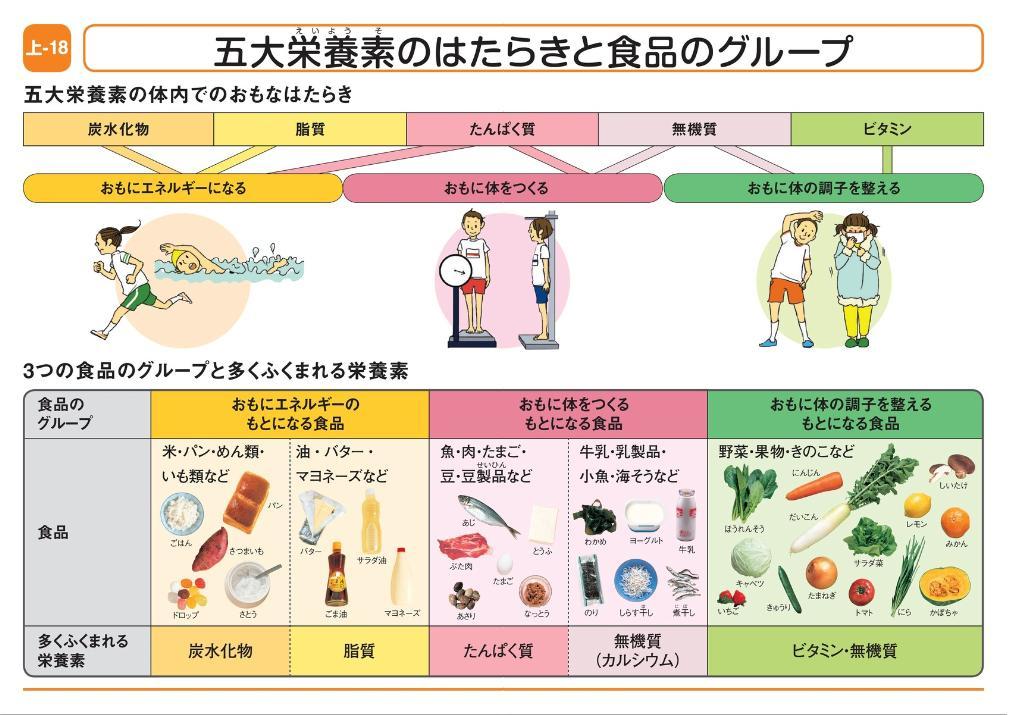 五大栄養素のはたらきと食品の ... : 小学生 学習教材 : 小学生